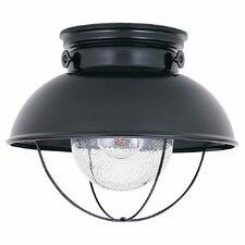 Everetts 1 Light Outdoor Flush Mount