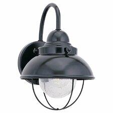 Everetts 1 Light Outdoor Barn Light