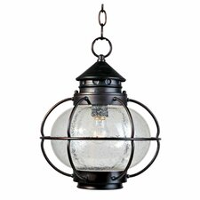 Easton 1 Light Outdoor Hanging Lantern