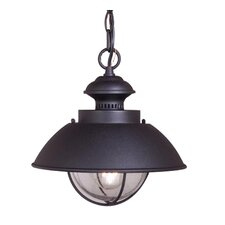 Reliance 1 Light Outdoor Hanging Lantern