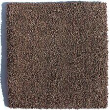 "Sarasota 24"" x 24"" Residential Carpet Tile in Brown"