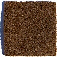 "Sarasota Residential 24"" x 24"" Carpet Tile in Brown"