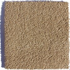 "Serenity Residential 24"" x 24"" Carpet Tile in Brown"