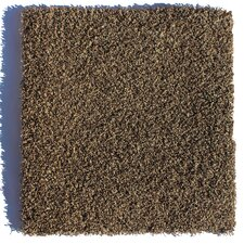 """SoHo Residential 24"""" x 24"""" Carpet Tile in Brown"""
