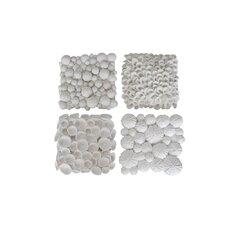 4 Piece Resin Sea Shell Wall Décor Set
