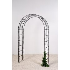 Line Rose Arch
