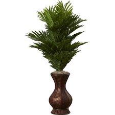 Areca Palm Floor Plant in Urn