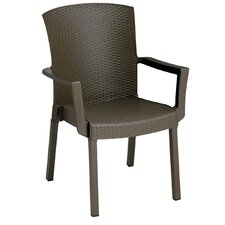 Elgin Dining Arm Chair (Set of 4)