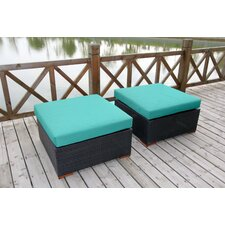 Scholtz Ottoman with Cushion (Set of 2)