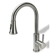 Single Handle Kitchen Sink Faucet with Pull Down Spray