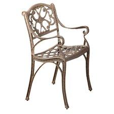 Van Glider Outdoor Arm Chair (Set of 2)