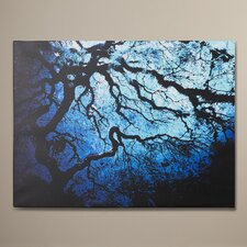 'Japanese Ice Tree' by John Black Framed Graphic Art on Wrapped Canvas
