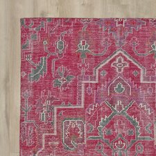Aanya Hand-Knotted Pink Area Rug