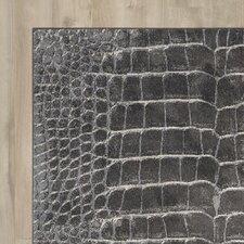 Bichir Charcoal Area Rug