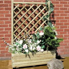 Rosa Rectangular Planter