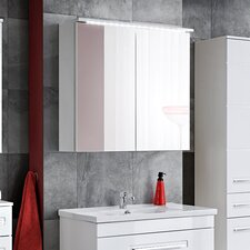 Wahiba 80 x 75 cm Surface Mount Flat Mirror Cabinet