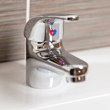Monobloc Basin Mixer with Waste
