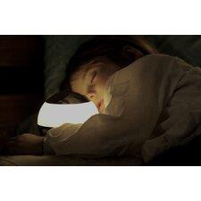 Globe Lamp Night Light