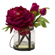 Blossom Peony Cutting in Vase