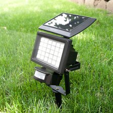 Nitewatch Solar Motion Sensor Flood Light