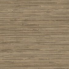 "Textures IV 32.7' x 20.5"" Grasscloth Wallpaper"