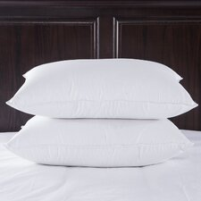 Cotton Fabric 400 Thread Count Egyptian Luxury Goose Down Pillow (Set of 2)