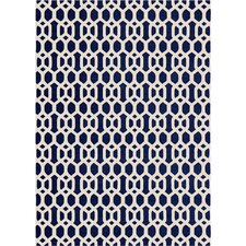 Hand Woven Blue/White Area Rug