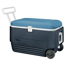 60 Qt. MaxCold Roller Cooler