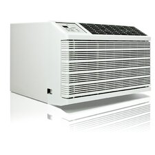 WallMaster Through the Wall 10000 BTU Air Conditioner with Remote