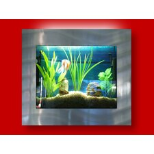 Aussie 4 Gallon Wall Mounted Aquarium Tank