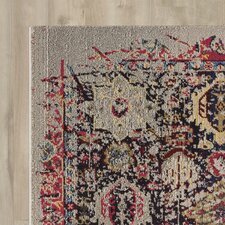 Chittim Multi-Coloured Area Rug
