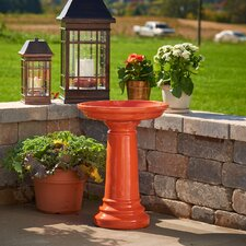 Aviatra Bird Bath