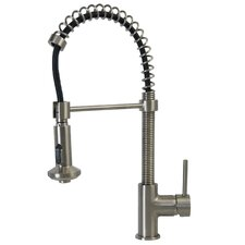 Single Handle Pull Down Coiled Kitchen Faucet with Nylon