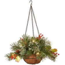 Wintry Pine Hanging Basket