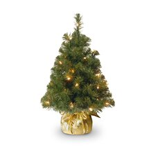 Nobel Spruce Tree Minature with Bag