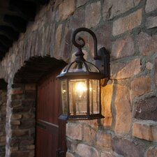 Adalyn 1 Light Outdoor Wall Lantern