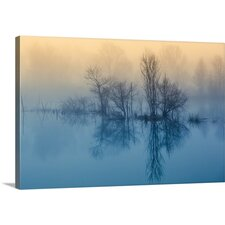 Morning Reflection by David Butali Photographic Print on Canvas