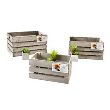 "Decorative Wooden Crate ""Postcard' Set"