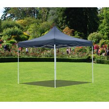 10 Ft. W x 10 Ft. D Canopy