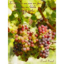 Vino Reflections Graphic Art on Wrapped Canvas