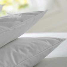 Anti Allergy Duck Feather and Down Standard Pillow (Set of 2)
