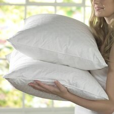 Foam Core Standard Pillow (Set of 2)