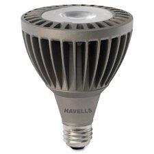 LED Flood Bulb