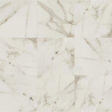 "Calacatta d'Italia 24"" x 24"" Porcelain Field Tile in Polished"