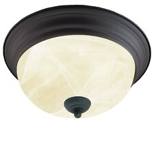 Ceiling Essentials 2 Light Flush Mount