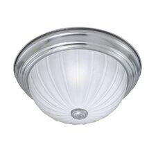 Ceiling Essentials 1 Light Flush Mount
