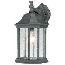 Hawthorne 1 Light Outdoor Wall Lantern