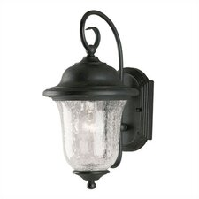 Studenburg 1 Light Outdoor Wall Lantern