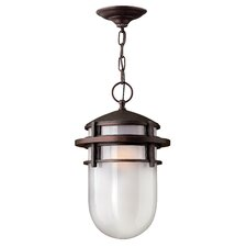 Reef 1 Light Outdoor Hanging Lantern