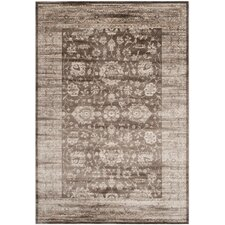 Brown/Ivory Area Rug